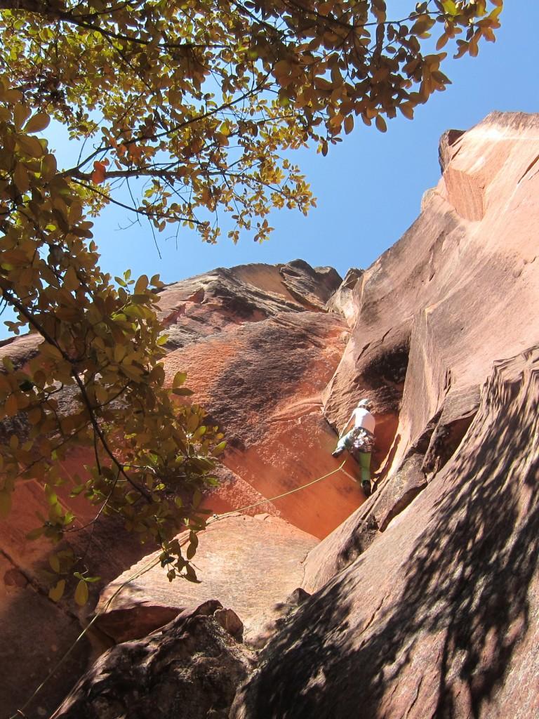 li ming climb