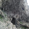 SALENTO, falesia delle Mannute